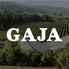 1581941854_GAJA_CAMARCANDA